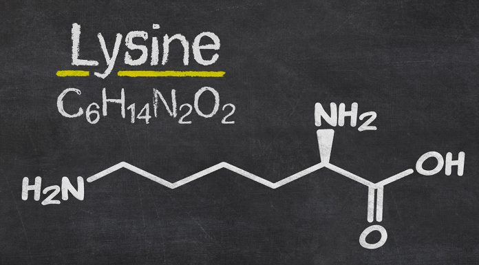 lysine benefits