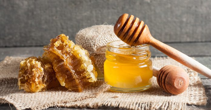 honey-insulin-melatonin-hymn-cycle