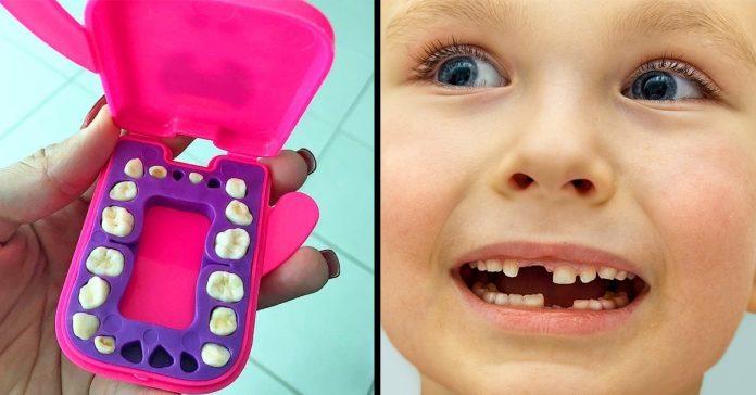 baby teeth stem cells