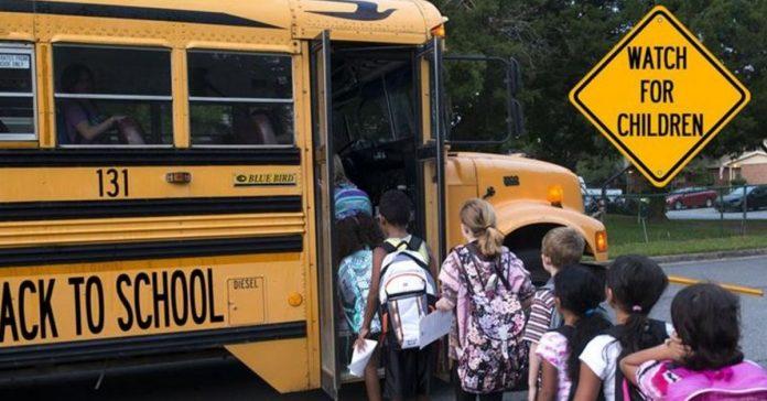 school bus driver viral video