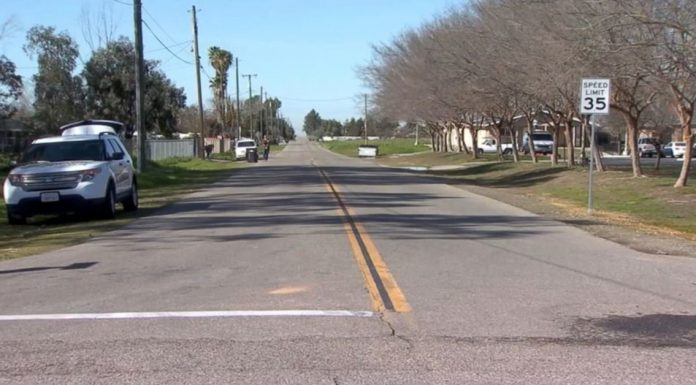 newborn baby found in the middle of the road