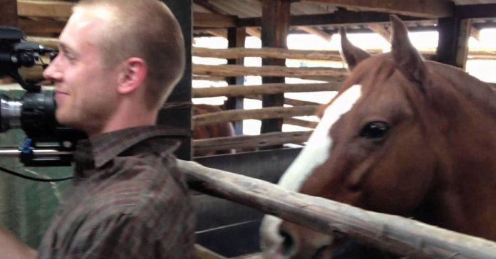 horse disturbs cameraman