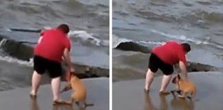 Woman Tossing Dog Frigid Lake