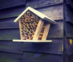 how to build bee house