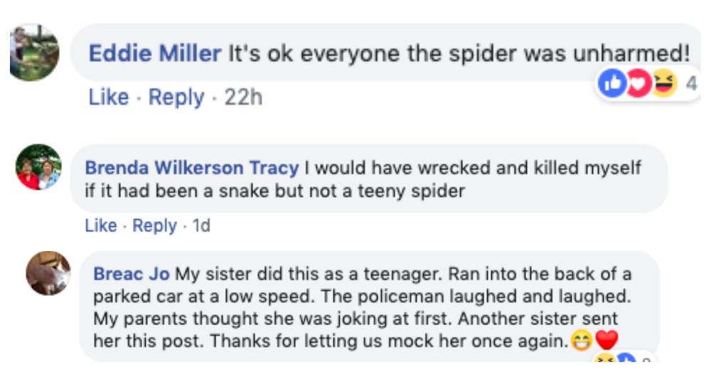 woman crashed car spider