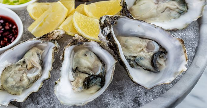 man dies eating raw oysters