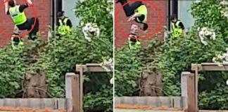 police officer trampoline raid