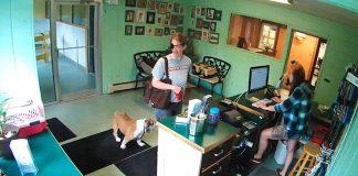 woman eye patch abandons dog
